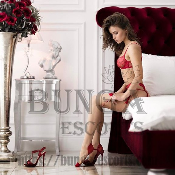high class escort in paris, VIP escort agency in Paris, Elite companion in Paris, escorte vip à paris